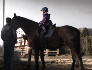 Mały jeździec na największym koniu w stadninie