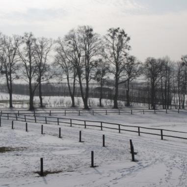 widok na łąki i pola