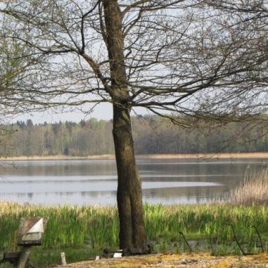 Warmia - jezioro na Węgoju