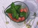 lemoniada jabłkowa  z werbeną